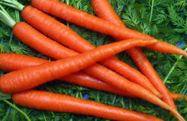 Eat Your Carrots, Moms-to-be!