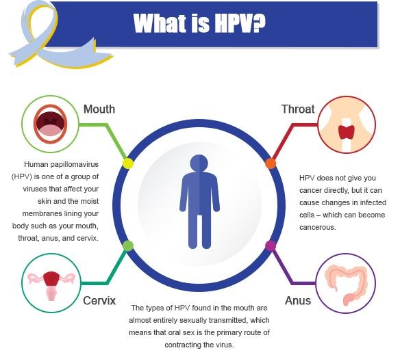Oral sex and hpv