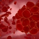erythrocyte-red-blood-cells