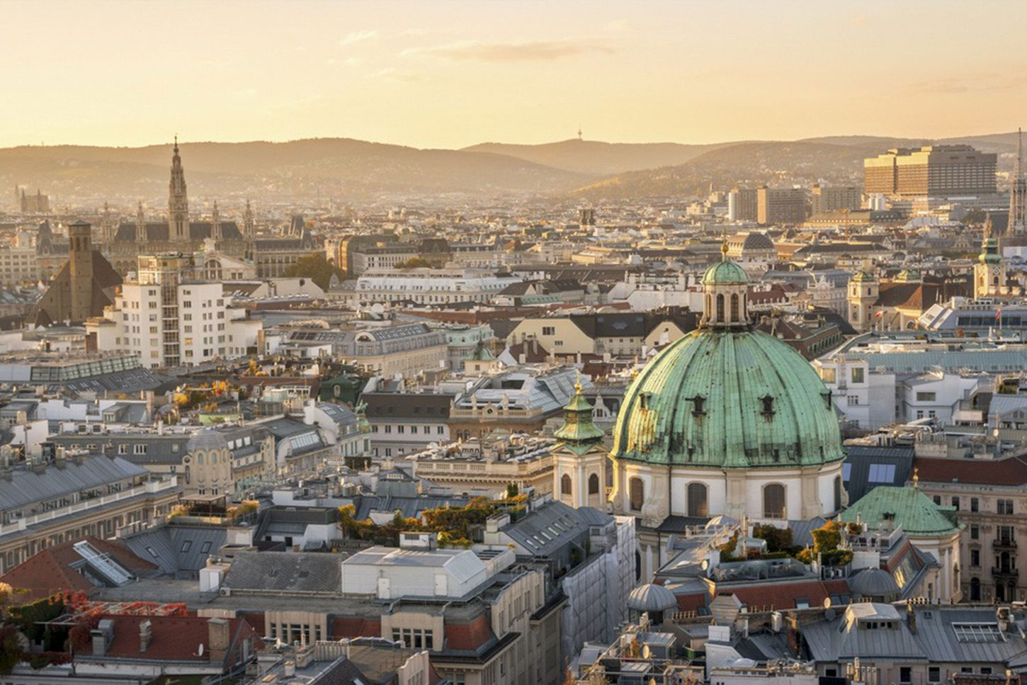 Vienna city birds eye view