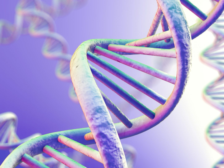 DNA under microscope