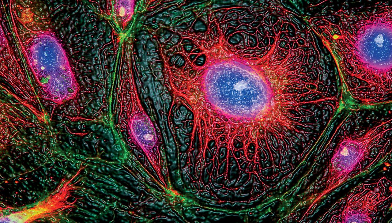 Genomic Science technology