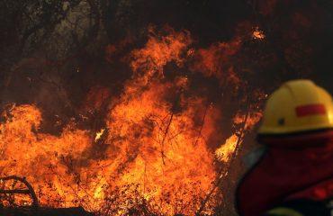 Fire fitter man